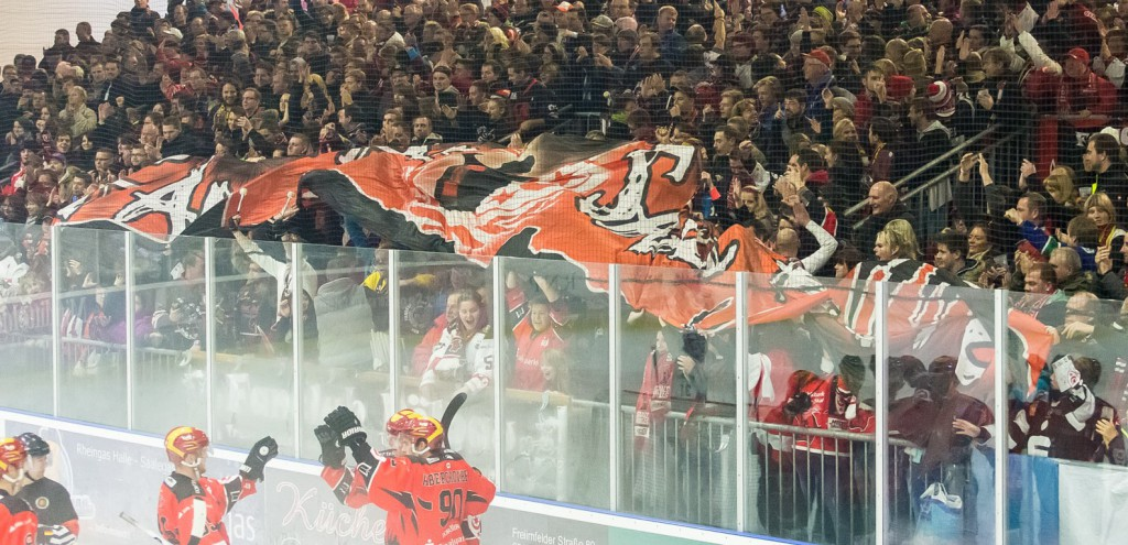 Saale Bulls - Icefighters Leipzig am 15.11.2015